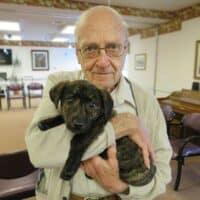 Meet Graham OUr new puppy
