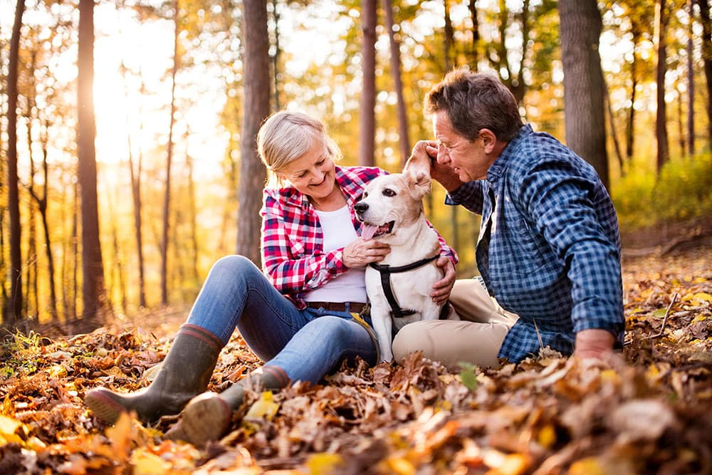Senior couple outside in fall weather surrounded by leaves with their dog